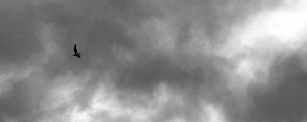 Eine dunkle stürmische Nacht schmeckt nach gebratener Leber oder mein Beitrag zu einer Blogparade